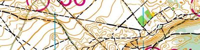 World Masters Orienteering Championships 2019. Model for Forest Qualification and Middle Final.